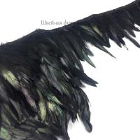 Перья петуха на ленте 15см (черный)