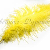 Перо страуса 60-65см (желтый)